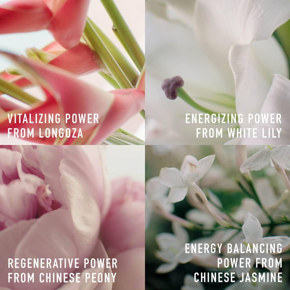 Dior Super Potent Serum สารสกัดจากตามธรรมชาติของดอกไม้พิเศษ 4 ชนิด
